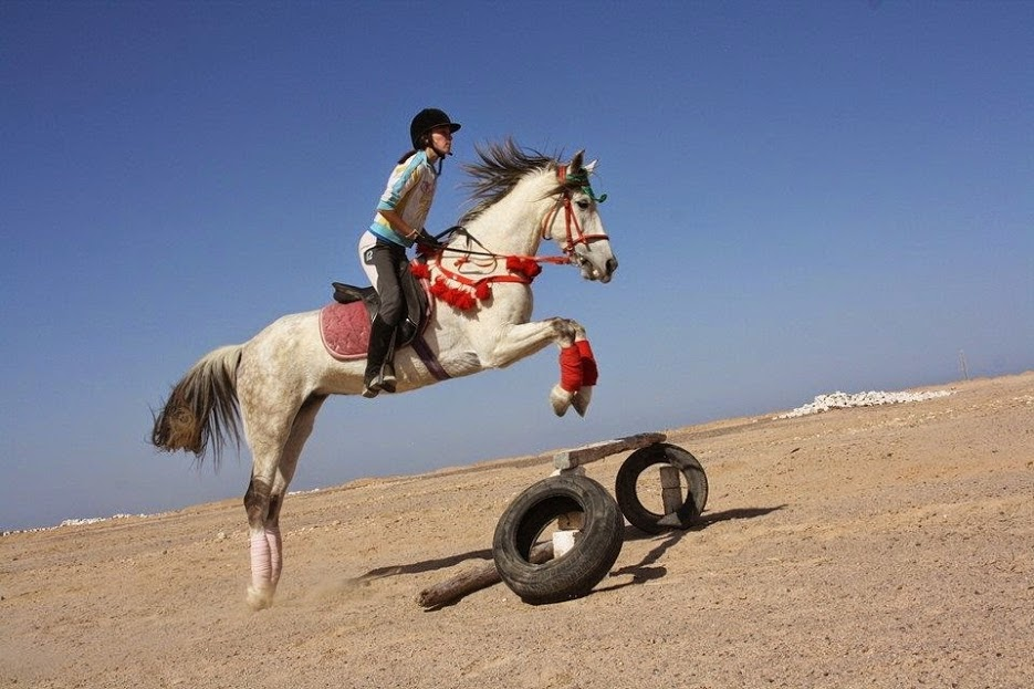 Gamilla Jumping